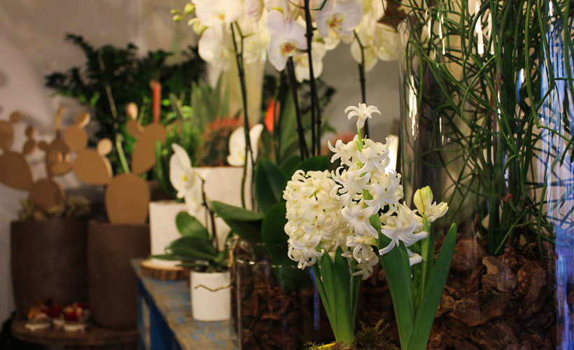 Oggetthi interior flower creations